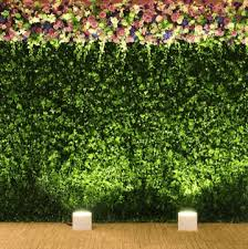 wedding backdrop melbourne backdrop 200cm boxwood topiary foliage hedge garden wedding melbourne