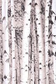 Shower Curtains With Trees Birch Tree Shower Curtain Tree Shower Curtains Green Walls And