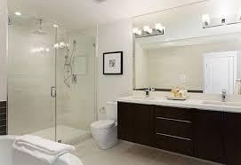 Houzz Modern Bathrooms Modern Bathroom Shower Design Houzz Direct Divide
