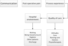 factors that shape the patient u0027s hospital experience and
