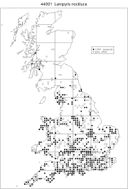 uk glow worm survey home page
