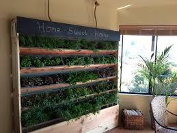 Indoor Garden by Diy Indoor Garden Gardening Ideas