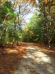 Rhode Island national parks images 21 best peaceful parks images rhodes rhode island jpg