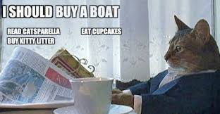 Cat Buy A Boat Meme - catsparella cat meme to do list reminds you to buy a boat among