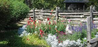 Botanical Gardens Volunteer by Volunteer Black Creek Pioneer Village
