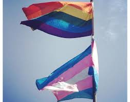Sexuality Flags Celebrating Sexual And Gender Diversity U2013 Theindependent Ca