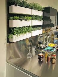 plante cuisine decoration décoration murale pour la cuisine 26 idées archzine fr