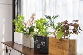 Windowsill Greenhouse Modern Sprout Planters Create Successful Windowsill Gardens