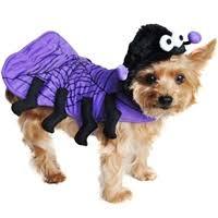 Dog Spider Halloween Costume Dog Costumes Cat Costumes Pet Costumes