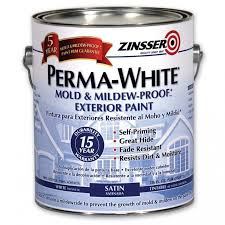 mold killing primer walmart zinsser home depot paint quart ideas