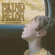 Soul One Blind Melon Blind Melon Nico Album Review Sputnikmusic