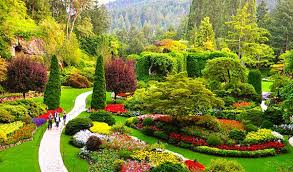 images of beautiful gardens explore the 8 most beautiful gardens in the world grass roots