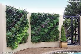 Best Plants For Vertical Garden - download vertical garden design solidaria garden