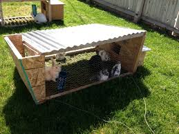 Rabbit Hutch Plans For Meat Rabbits How To Raise Meat Rabbits For Free Journey To Sustainability