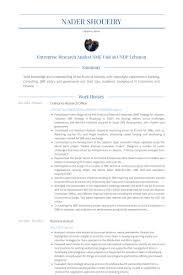 sle cv for united nations jobs research officer resume sles visualcv resume sles database