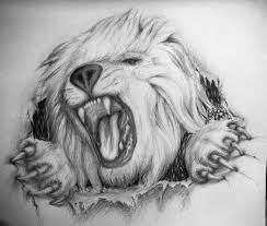 hungry angry lion tattoo design real photo pictures images and