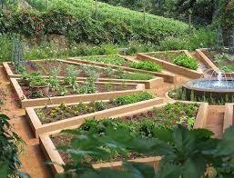 kitchen potager layout of this vegetable plot reminded me of