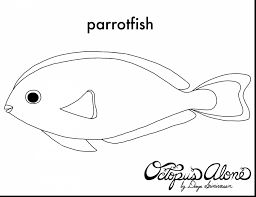 fish outline coloring page fabulous parrot outline coloring page with parrot coloring page