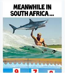 Shark Attack Meme - when hilarious mick fanning memes attack gq