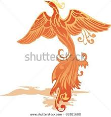 https i pinimg 736x 4a 36 best pheonix images images on bird