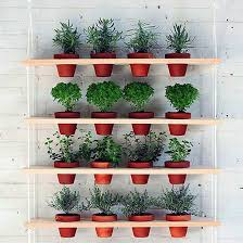 create a space saving vertical herb garden with these brilliant