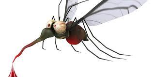 Best Backyard Bug Repellent Best 12 Mosquito Repellent Plants 2017 Version Pestwiki