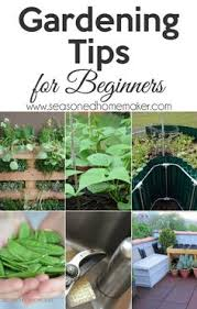 vegetable gardening for beginners the complete guide gardening