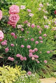 272 best summer flower garden images on pinterest flower beds