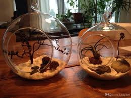 Glass Globes For Garden Hanging Globe Terrariums Indoor Succulent Gardenig For