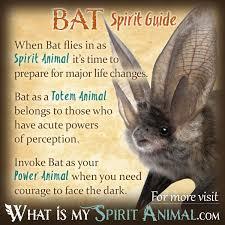 bat symbolism u0026 meaning spirit totem u0026 power animal