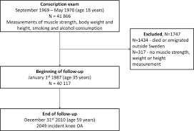 knee extensor strength and body weight in adolescent men and the