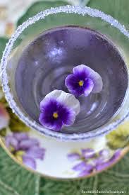 best 25 parma violets ideas on pinterest kid parties kids