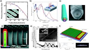 metal nanoparticle u2013semiconductor nanowire hybrid nanostructures