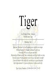 meaning of the name tiger nydob com