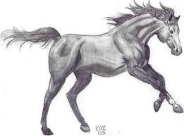 horse sketch by kaz by greeneyez on deviantart