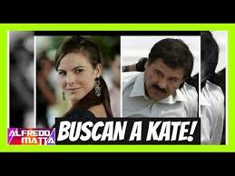 imágenes de memes de kate del castillo autoridades buscan a kate del castillo por el chapo youtube