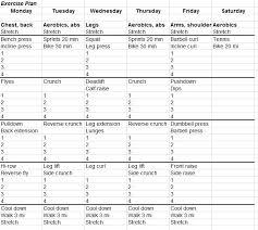 fitness schedule template word excel