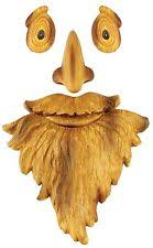 red shed outdoor whimsical tree man face hat mustache and beard