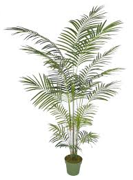 house of silk flowers artificial areca palm tree reviews wayfair
