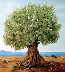 the olive tree anti semitism and bible prophecy theology in