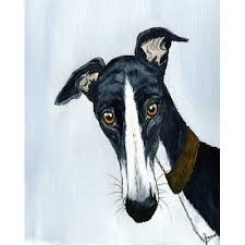 181 best greyhound drawings illust images on pinterest