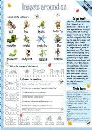 english worksheet insects insects pinterest vocabulary