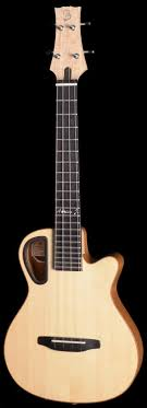 bureau 駘ectrique 7 best ukulele images on ukulele guitars and instruments
