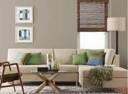 living room colors amazing