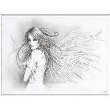 photos de studio angel wings drawing polyvore