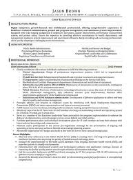 Ceo Sample Resume by Medical Resume Examples Resume Professional Writers