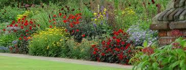 small garden border designs