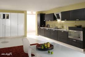 italian modern kitchen kitchen perfect italian modern kitchen design contemporary