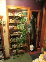 relaxshacks com a secret door in a small seattle house