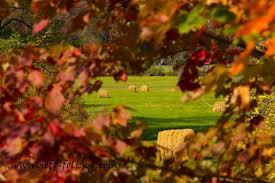 fall foliage report 4 october 2017 england fall foliage